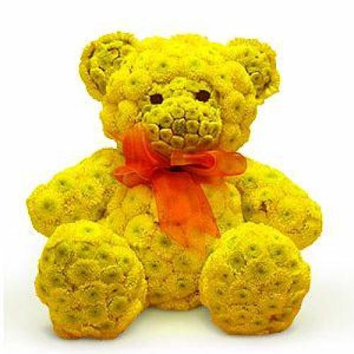 Купить на заказ Заказать Жёлтый мишка с доставкой по Жескасгану с доставкой в Жезказгане