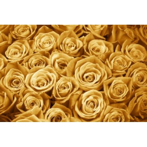 Купить на заказ Заказать Золотые розы  101 шт с доставкой по Жескасгану с доставкой в Жезказгане