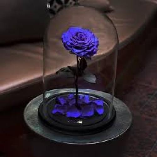 Купить на заказ Заказать Роза в колбе   фиолетовая с доставкой по Жескасгану с доставкой в Жезказгане