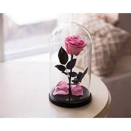 Купить на заказ Заказать Роза в колбе розовая с доставкой по Жескасгану с доставкой в Жезказгане
