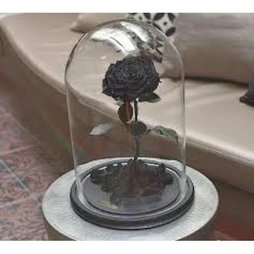 Купить на заказ Заказать Роза в колбе  черная с доставкой по Жескасгану с доставкой в Жезказгане